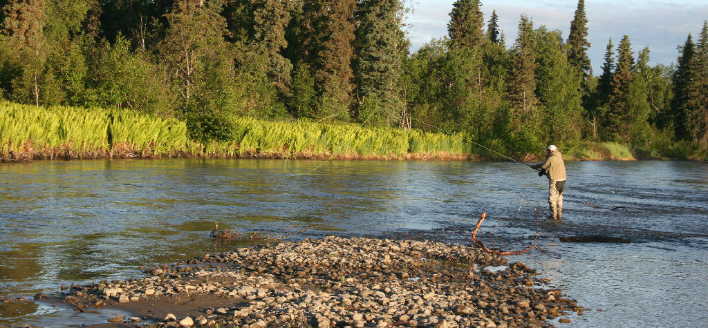 Talachulitna River Fly Fishing