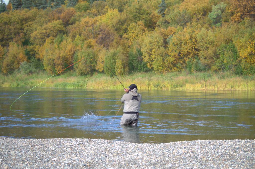 Spey casting in alaska
