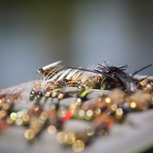 Fishing equipment: Fishing flies