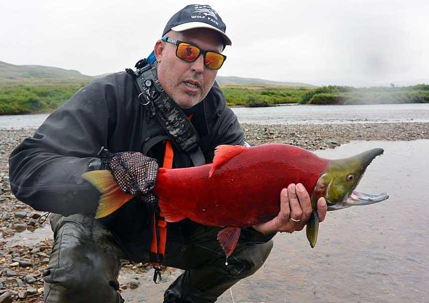 Red salmon fish - photo#13