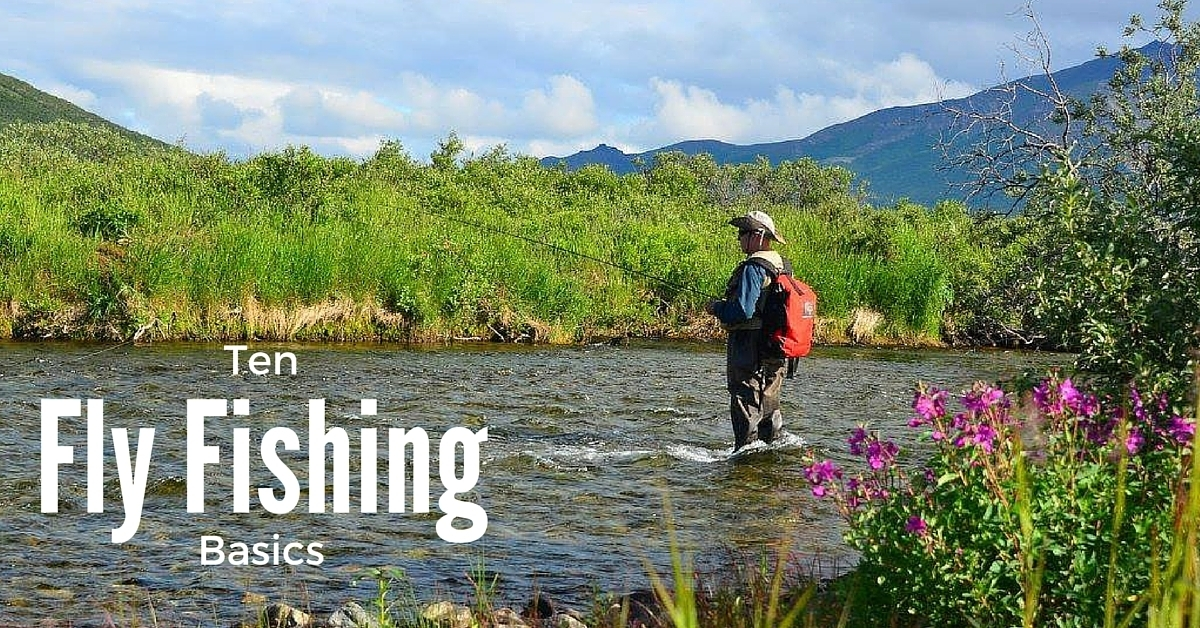 10 trout fly fishing basics that we all forget sometimes for Fly fishing basics