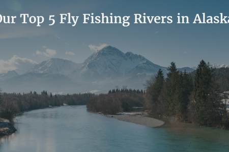 Our Five Favorite Rivers for Fly Fishing in Alaska