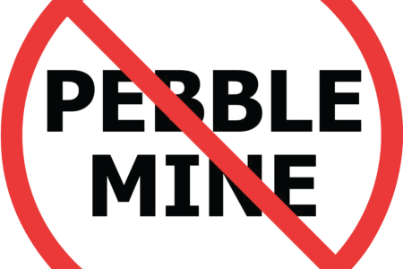 Save Bristol Bay from the Pebble Mine Project